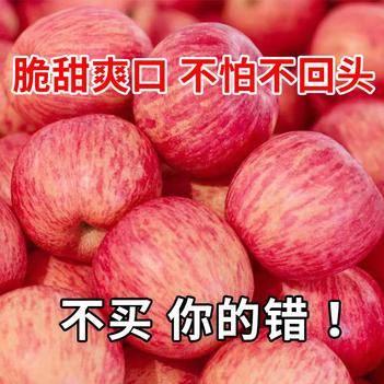 山西新鮮現摘紅富士蘋果正宗水果脆甜冰糖心丑蘋果10斤整箱