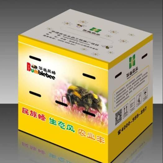 內蒙古自治區赤峰市紅山區 熊蜂授粉,生態安全,增產提質
