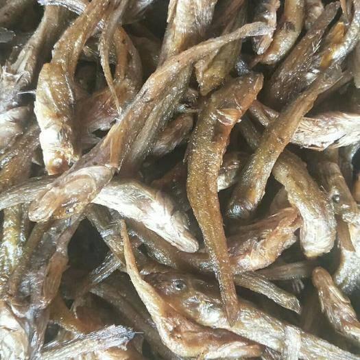 江西省吉安市泰和縣 油炸小黃魚干(無膽全是肉)品相一流口感一流(一手貨源)