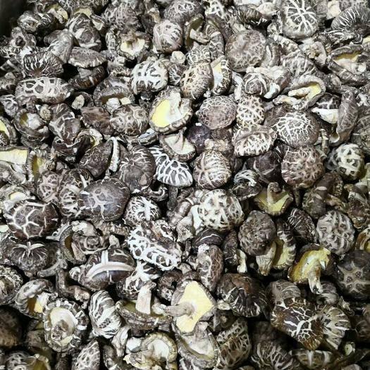 廣東省韶關市仁化縣原木干香菇 干香菇 2.5cm~4cm