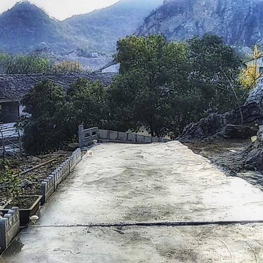 湖北省荊州市松滋市有林地 林地山地養殖種植用地流轉