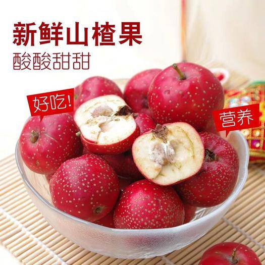 山西省运城市万荣县 新鲜山楂果 鲜果 红果 加工冰糖葫芦  山楂罐头 山楂酱