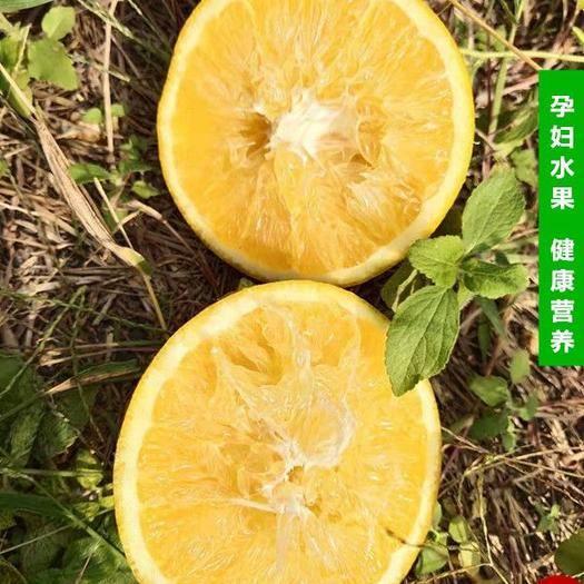 福建省漳州市華安縣美國新奇士臍橙 新鮮現摘現發一級大果美國臍橙超甜多汁五斤包郵