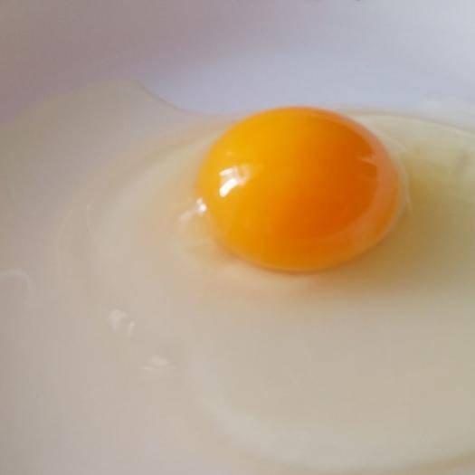 湖北省荊門市鐘祥市 正宗農村散養土雞蛋,醇香細膩!