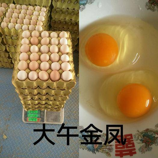河北省衡水市饒陽縣 土雞蛋/粉殼