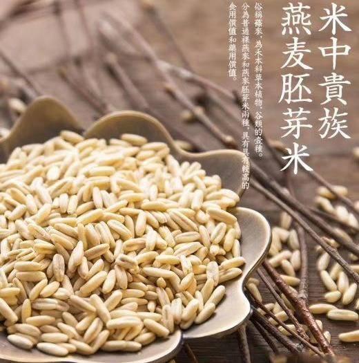 河北省张家口市张北县 燕麦胚芽米,粮食中的燕窝,一件代发,工厂价