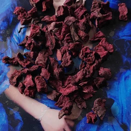 吉林省長春市農安縣脫水紅甜菜 24個月以上