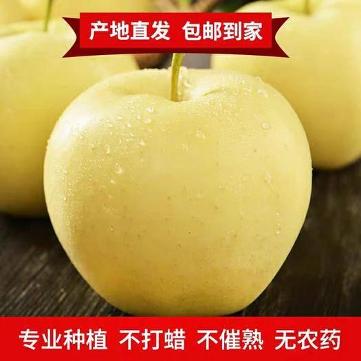 山東省煙臺市福山區 黃元帥蘋果5斤裝26.9包郵