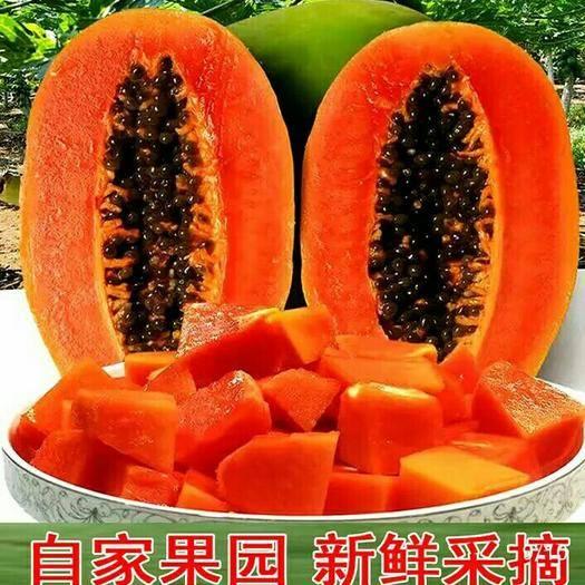 廣西壯族自治區南寧市西鄉塘區 紅心木瓜新鮮水果帶箱9.5-10斤