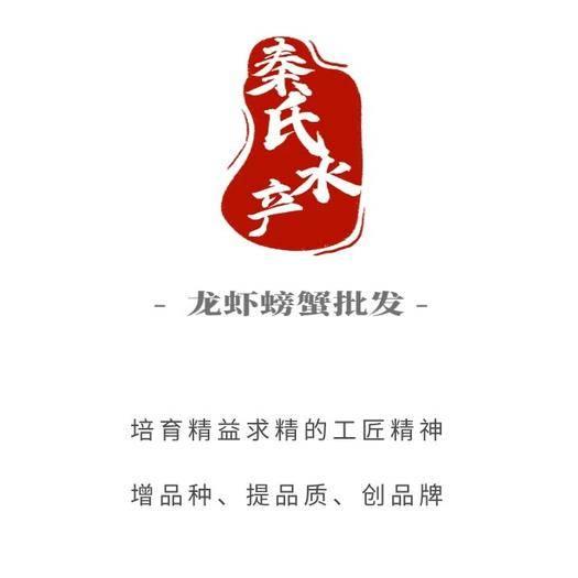 江蘇省鹽城市阜寧縣清水小龍蝦 4.2-6.8   塘蝦