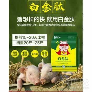 上海市閔行區催肥藥 白金肽育肥豬催肥促生長 提前出欄