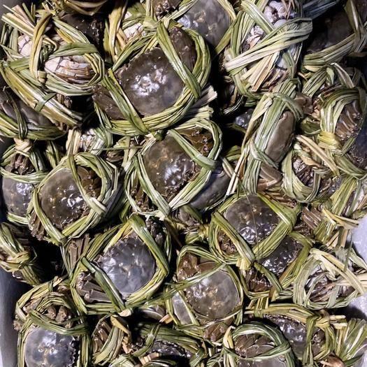 廣東省深圳市羅湖區 2.5母大閘蟹