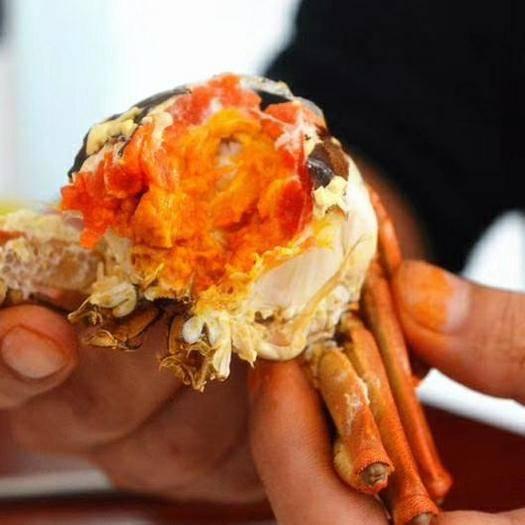 青海省海西蒙古族藏族自治州德令哈市 青海散養大閘蟹