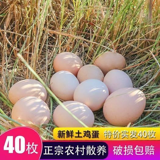 江蘇省南通市海門市 正宗土雞蛋40枚農家散養新鮮雞蛋天然農村山林自養柴雞蛋草笨