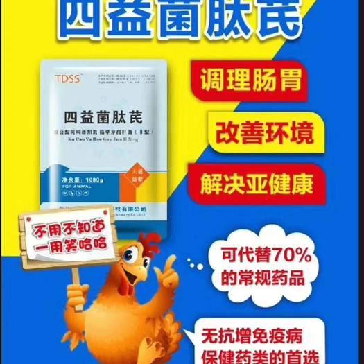 河南省鄭州市金水區 肉禽飼料添加劑 降低料肉比 調節腸道 減少百分之70醫藥成本