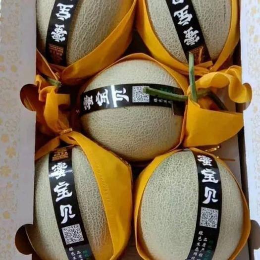 山东省潍坊市寿光市 我们王婆甜瓜就是甜甜甜