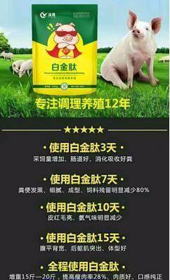 河南省鄭州市金水區 魔鬼催肥長膘添加劑 獸用飼料添加劑肥豬散增長素