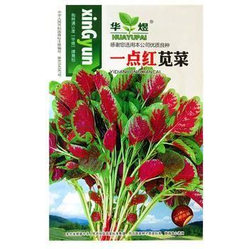 紅莧菜種子蔬菜籽 青香莧玉米菜千菜谷紅菜荇菜寒菜漢菜青莧菜