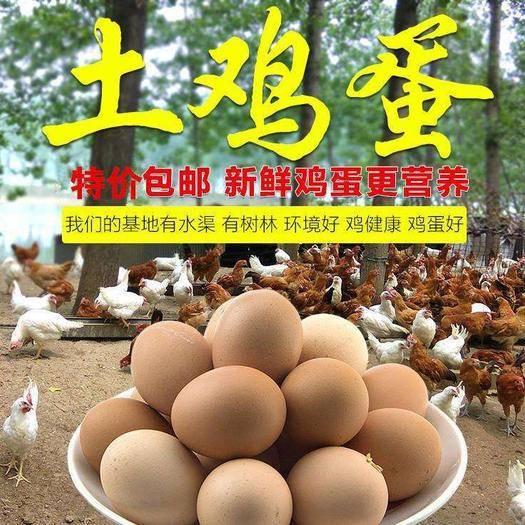 河南省鄭州市二七區土雞蛋 綠色蔬菜農家喂養