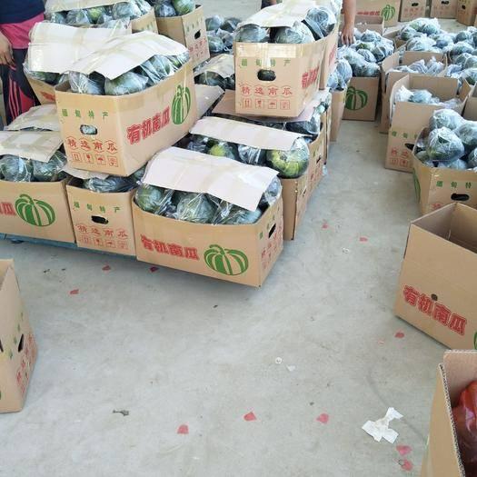 云南省德宏傣族景頗族自治州瑞麗市 優質板栗南瓜新貨,小香東瓜,價廉物美,喜歡的老板趕緊下手吧