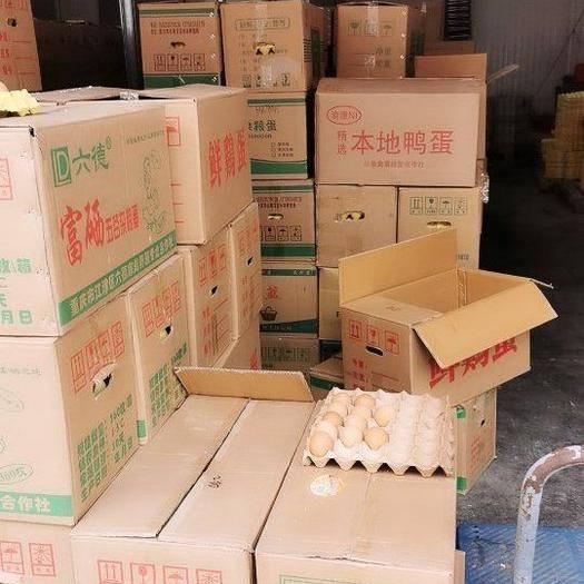 重慶市長壽區 雞蛋土雞蛋,貨源穩定,重慶,貴州,四川,湖南,湖北,優