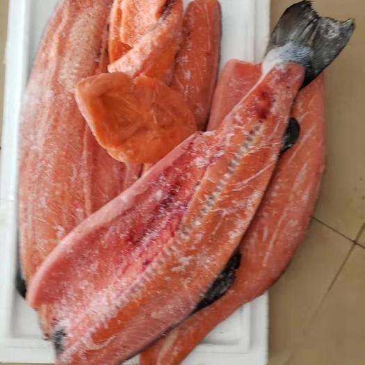 廣東省深圳市南山區 三文魚廢肉,魚排