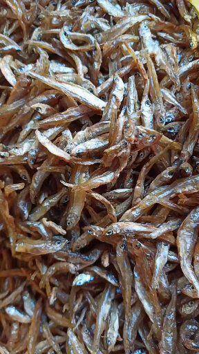 江蘇省蘇州市吳中區干炸小公魚 野生淡水油炸小公魚3~5cm天然綠色放心食用