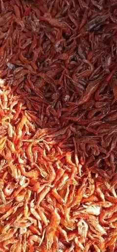 江蘇省蘇州市吳中區紅蝦干 野生烤箱小紅蝦蝦,好吃又好看又美味。色香味俱全
