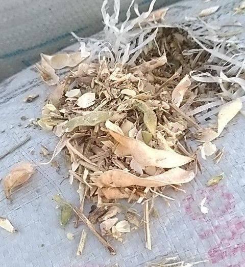 安徽省亳州市蒙城縣牛羊飼料 牛羊草料。黃豆莢,豆皮。