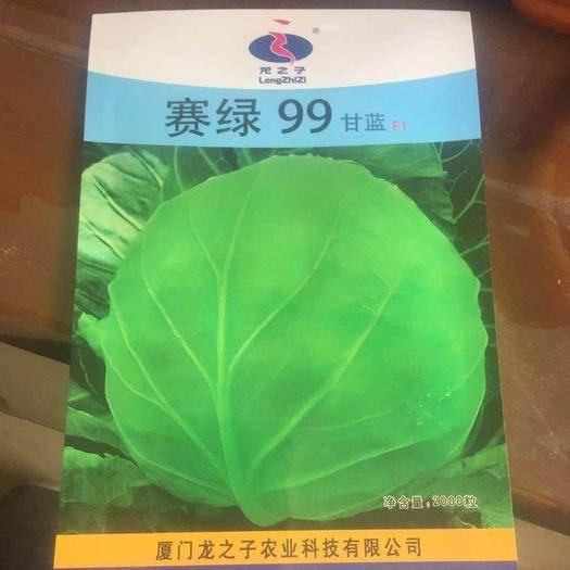 山東省濰坊市壽光市綠甘藍種子 甘藍種子   賽綠99甘藍F1