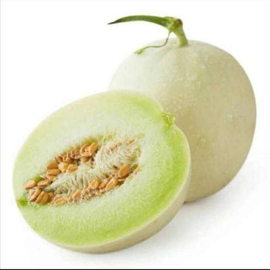 海南省东方市东方市玉姑甜瓜 1斤以上