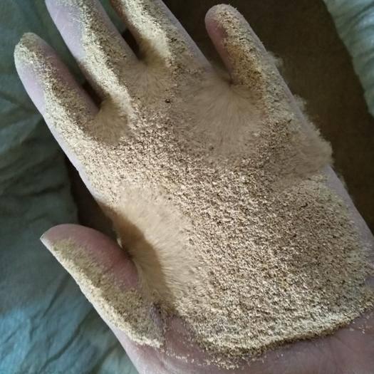 山東省煙臺市龍口市 面包蟲黃粉蟲蟲糞蟲沙,改善土壤板結禽畜飼料添加