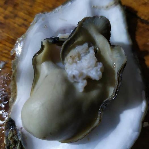 山東省威海市乳山市山東乳山牡蠣 海水 3-4兩/只 鮮活水產