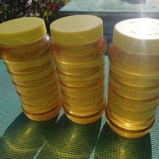 黑龍江省牡丹江市海林市 您想買純正的蜂蜜嗎。自產自銷純天然無污染,無添加,真正的原蜜