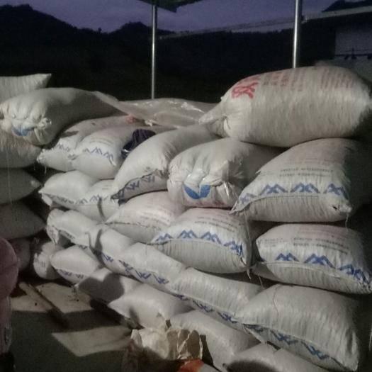 廣西壯族自治區河池市巴馬瑤族自治縣有機山茶油