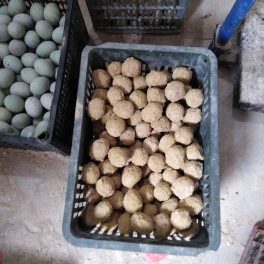 安徽省蚌埠市固鎮縣 陳老漢,三十年,用心做皮蛋