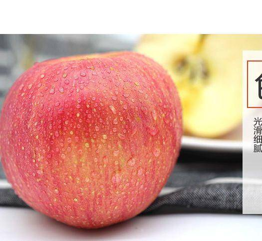 廣東省東莞市東莞市 紅富士蘋果     25元/箱    10斤