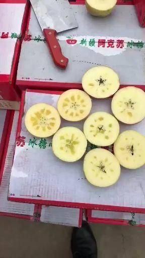 新疆維吾爾自治區阿克蘇地區阿克蘇市 新疆阿克蘇冰糖心蘋果批發假一賠萬大蘋果量大價優質量好蘋果