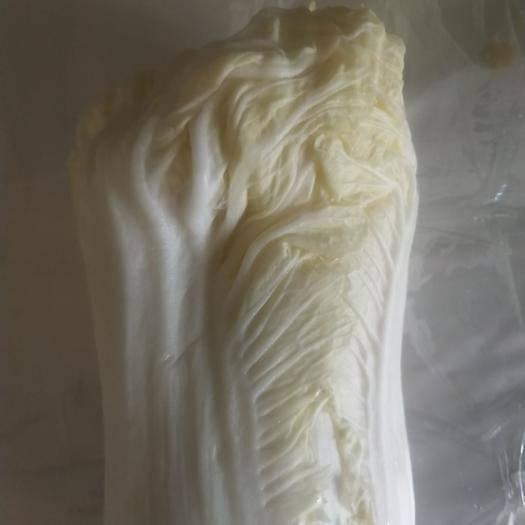河南省鶴壁市浚縣滿春大白菜 6~10斤 凈菜