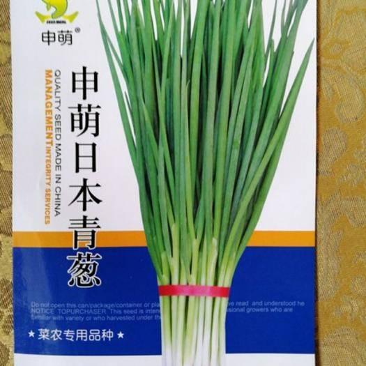 福建省漳州市南靖縣 申萌 日本青蔥種子 小香蔥種子