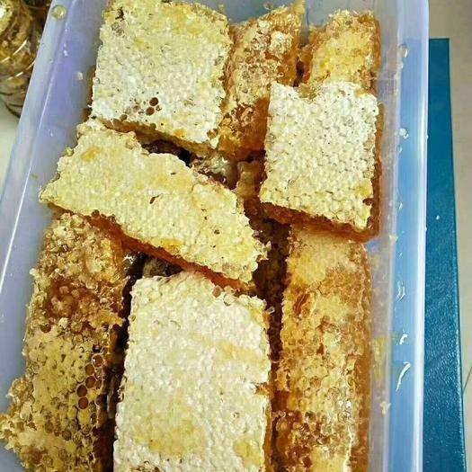 云南省玉溪市紅塔區 自家土蜂蜜