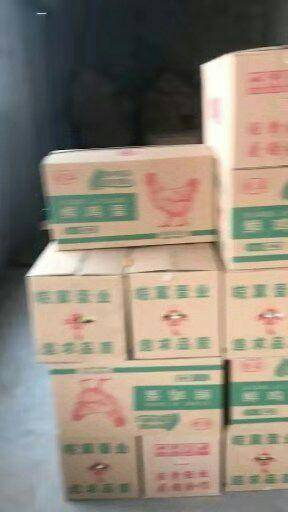 河北省邯鄲市館陶縣普通雞蛋 高品蛋價格優惠