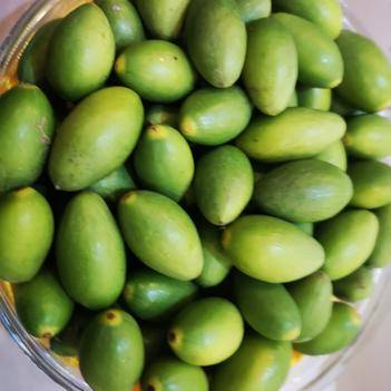 福州特产闽侯橄榄鲜食水果橄榄甜香脆无渣甘甜果