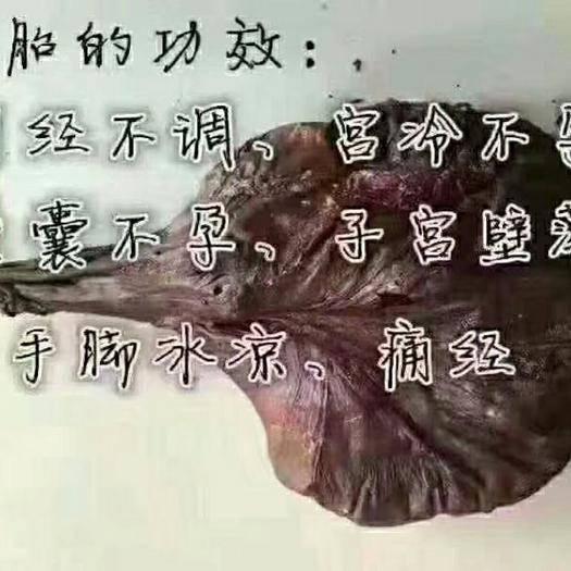 吉林省長春市雙陽區 鹿胎梅花鹿鹿胎加配方熬制成膏女性滋補養顏月月輕松鹿場直供正品
