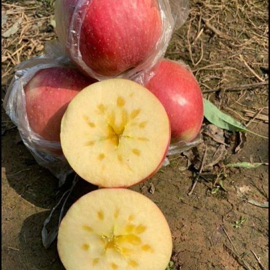 山西省臨汾市隰縣 大美隰州蘋果
