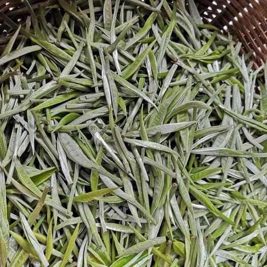 云南省西雙版納傣族自治州景洪市 普洱生茶