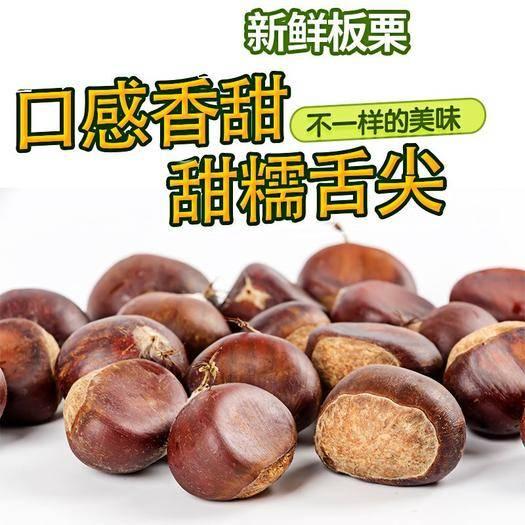 遼寧省丹東市振安區 新鮮丹東板栗   個大五斤包郵