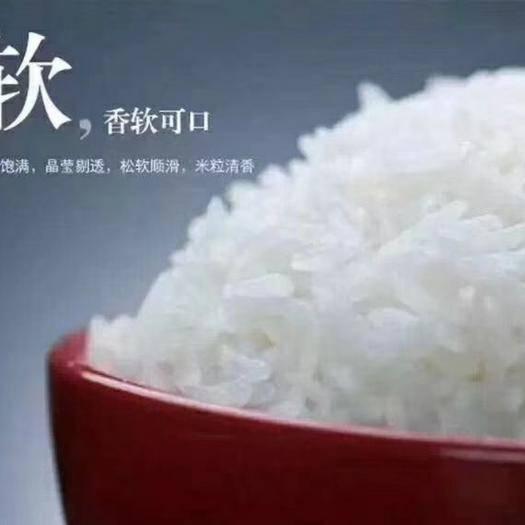 黑龍江省哈爾濱市南崗區參米 一等品 晚稻 粳米