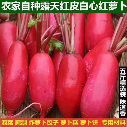 安徽省宿州市泗县 新鲜红萝卜农家自种红皮白心萝卜泡菜红水萝卜蔬菜3/5斤装