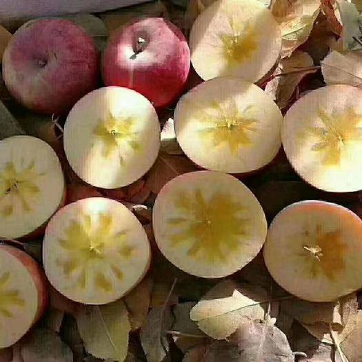 新疆維吾爾自治區阿克蘇地區阿克蘇市 新疆阿克蘇冰糖心紅富士蘋果,糖心十足,甘甜可口!